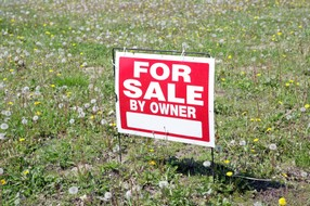 FSBO Sign in a lot of weeds